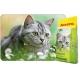 SensiCat 10 kg  karma dla kotów wrażliwych