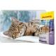 Culinesse 2 kg karma dla kotów